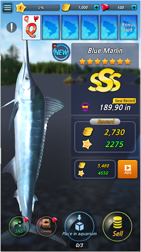 Fishing Season screenshot 3