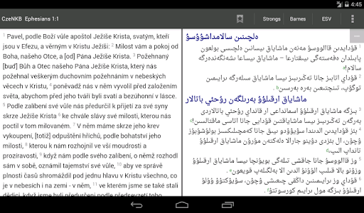 Bible Study app, by And Bible Open Source Project tangkapan layar 12