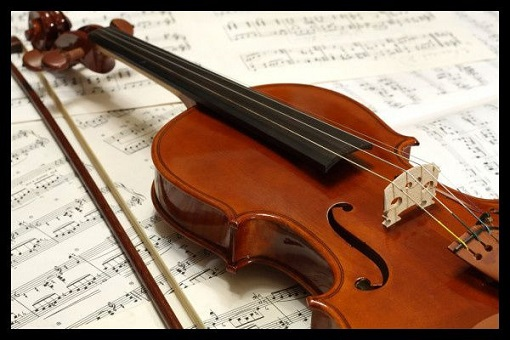 🎻Learn how to play the violin🎻 screenshot 5