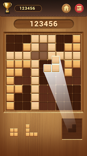 Wood Block Sudoku Game -Classic Free Brain Puzzle screenshot 3