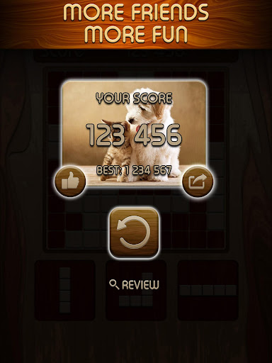 Woody Block Puzzle ® screenshot 14