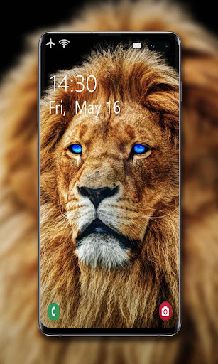 Lion Wallpaper 🦁 screenshot 7