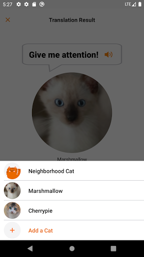 MeowTalk Beta screenshot 4