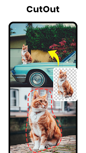 Picture Editor Pro, Effects, Face Filter - PicPlus screenshot 8