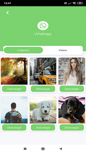 Download videos, images and statuses screenshot 3