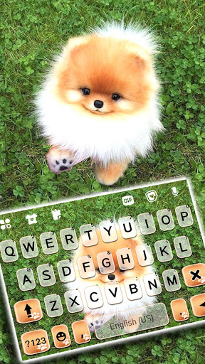 Cute Puppy Pom Keyboard Background screenshot 1