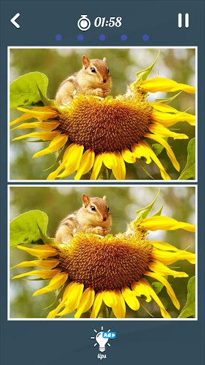 Spot the Differences game free screenshot 7