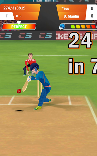 Cricket Star screenshot 14