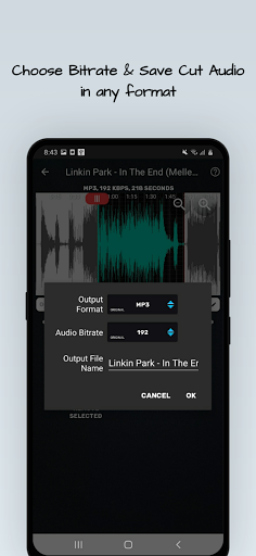 MP4, MP3 Video Audio Cutter, Trimmer & Converter screenshot 4