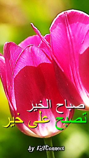 Good Morning in Arabic screenshot 1