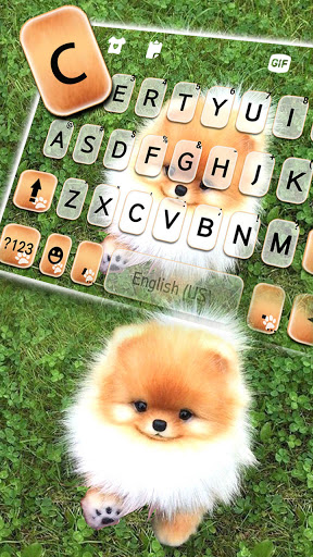 Cute Puppy Pom Keyboard Background screenshot 2