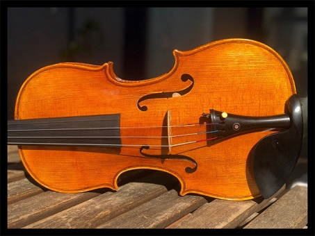 🎻Learn how to play the violin🎻 screenshot 2