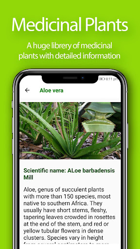 Herbal Home Remedies and Natural Cures screenshot 5