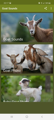 Goat Sounds screenshot 1