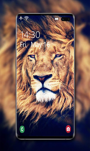 Lion Wallpaper 🦁 screenshot 2
