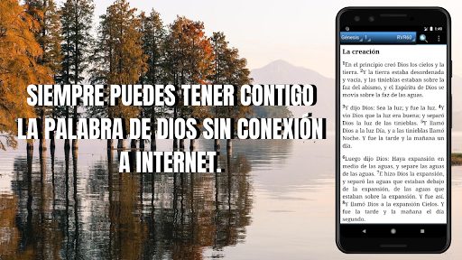 Bible NVI (Spanish), No internet connection screenshot 1