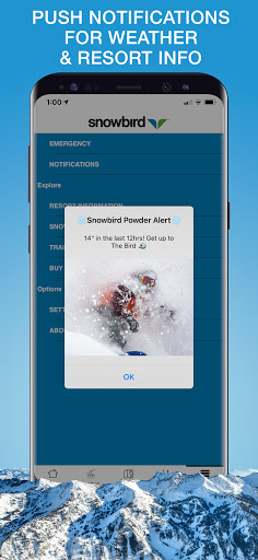 Snowbird screenshot 6