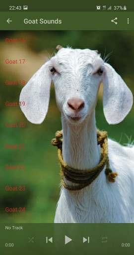 Goat Sounds screenshot 2