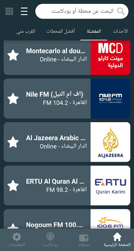 Radio Egypt راديو مصر screenshot 3