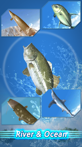 Fishing Season screenshot 6