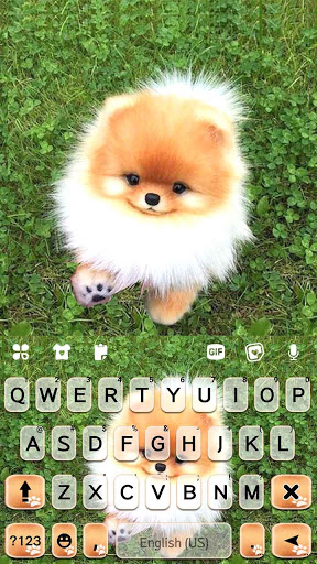Cute Puppy Pom Keyboard Background screenshot 5