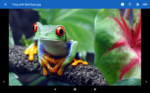 File Viewer for Android screenshot 18