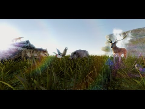 video review of Wild Animal Hunter 3D