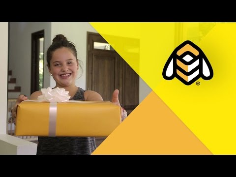 video review of Beetrack