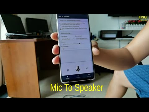 video review of Mic To Speaker