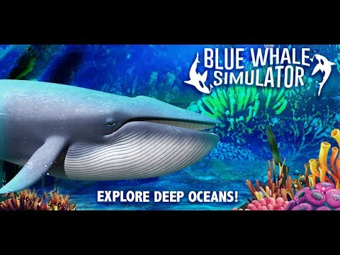 video review of Blue Whale Simulator