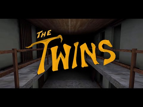 video review of The Twins