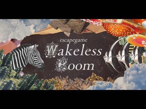 video review of Escapegame WakelessRoom