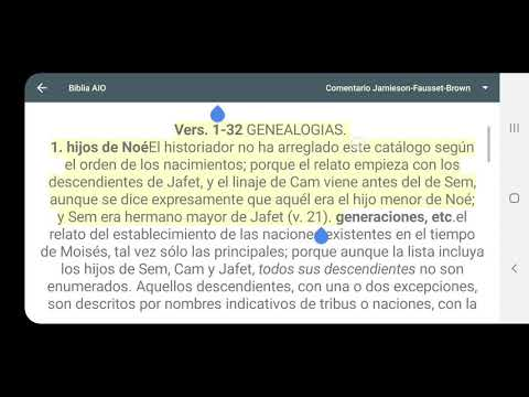video review of CeluBiblia AIO