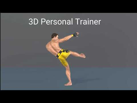 video review of Muay Thai Fitness