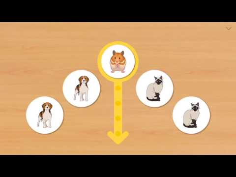 video review of Animal Card Matching