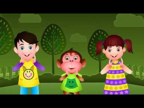 Happy Birthday Nursery Rhymes for kid's fun Best learning video for kids