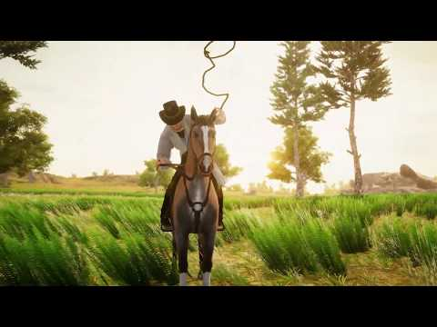 video review of Cowboy Rodeo Rider