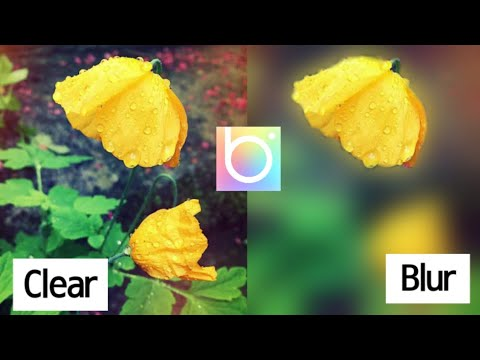 How to Blur Image | Easily Blur Photos Like Dslr 2021