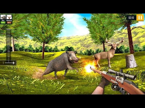 Wild Animal Hunting 2020 Free Android Gameplay