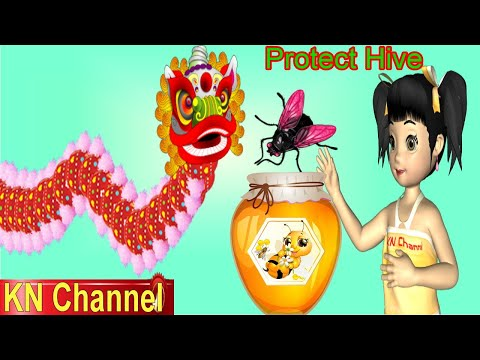 video review of Protect Hive KN Channel