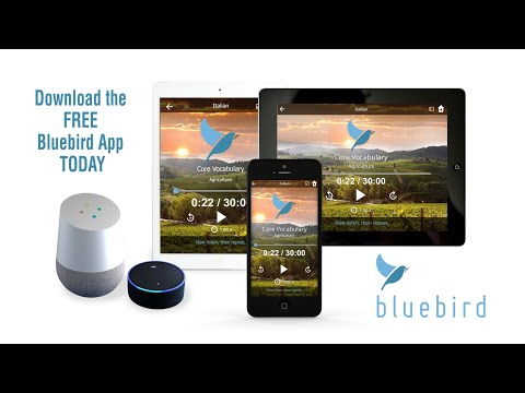 video review of Learn 163 Languages | Bluebird