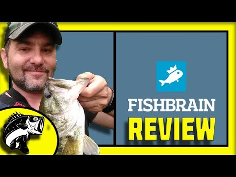Fishbrain REVIEW!   Facebook for FISHERMEN!   Is Fishbrain Worth it?   Find Where to Catch Fish