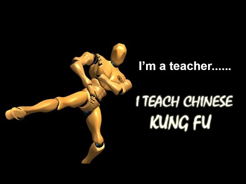 video review of Wing Chun Trainer