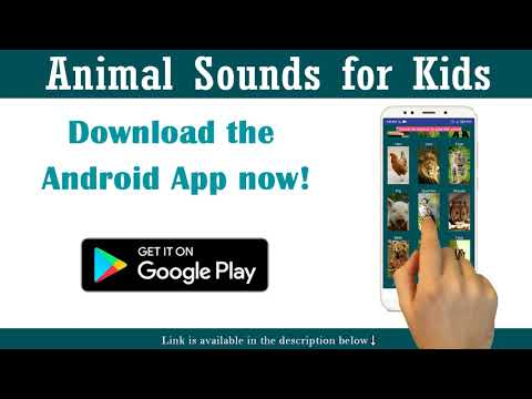 Animal Sounds for Kids - Android App!