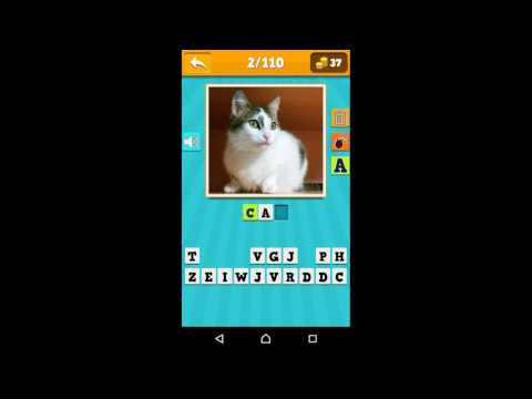 video review of Animals Quiz