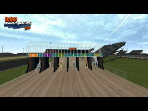video review of Wild Animals Racing 3D