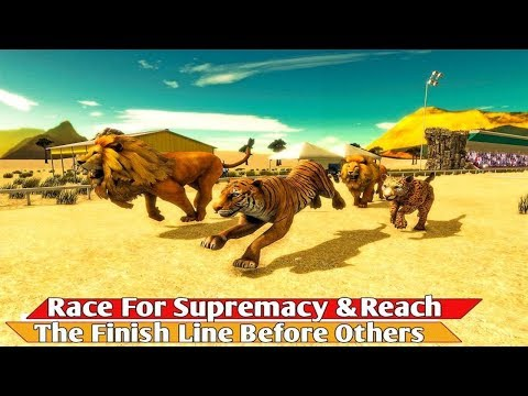 Savanna Animal Racing 3D All Types Of A Big Cat Species And More
