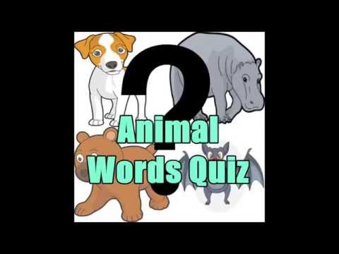 Animal Image Words Quiz For Kids on android