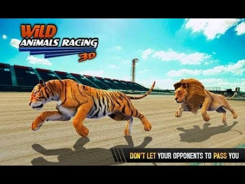 Wild Animals Racing 3D - Android Gameplay #2   DishoomGameplay