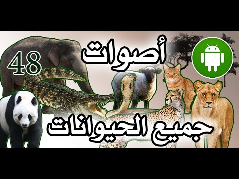 Learn Animals Name Animal Sounds Animals Pictures Android App